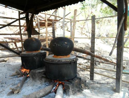 Proses Pembuatan Sopi - Tuak Khas Alor