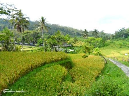 Image Result For Wisata Magelang