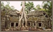 Lara Croft Tomb Rider - Ta Phrom Temple