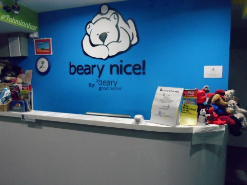 Beary Nice Hostel - Reception