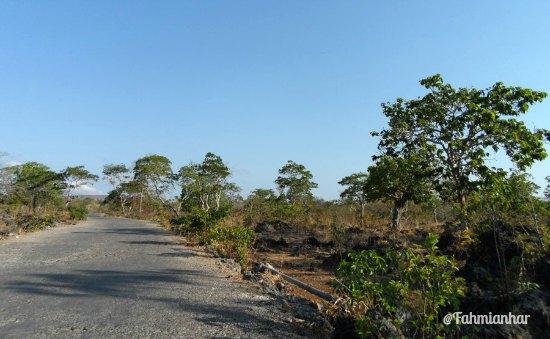 Kawasan Karst Gua Kristal Kupang NTT